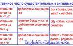 Множественное число существительных в английском языке: образование и особые случаи с примерами