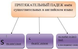 Притяжательный падеж в английском языке: особенности образования и исключения из правил