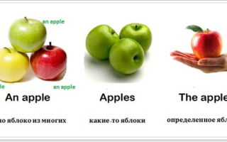 Артикли в английском языке (Articles): основные правила их использования с примерами