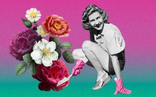 10 популярных английских идиом о цветах и растениях