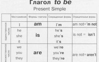 Present Simple: правила, примеры значений грамматического построения и предложений