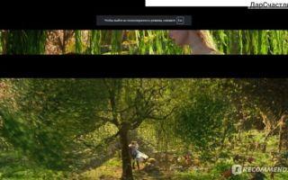 Фильм «Малефисента»: смотрите и учитесь
