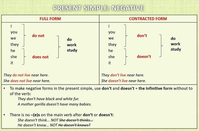 Present Simple - настоящее простое время в английском языке: образование, правила, употребление
