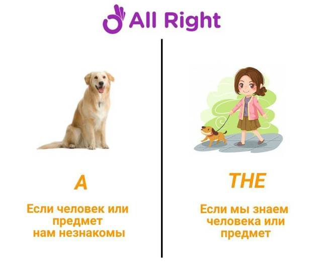 Артикли в английском языке. В чем разница определенного и неопределенного?