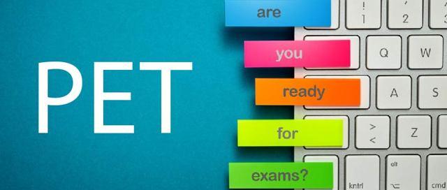 Подготовка к PET — сдайте экзамен по английскому языку на отлично!