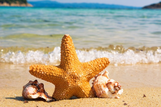 Английские слова для отдыха на пляже
