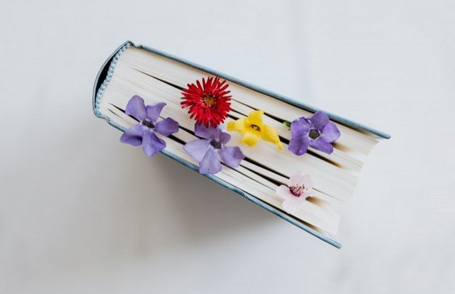8 англоязычных подкастов о книгах