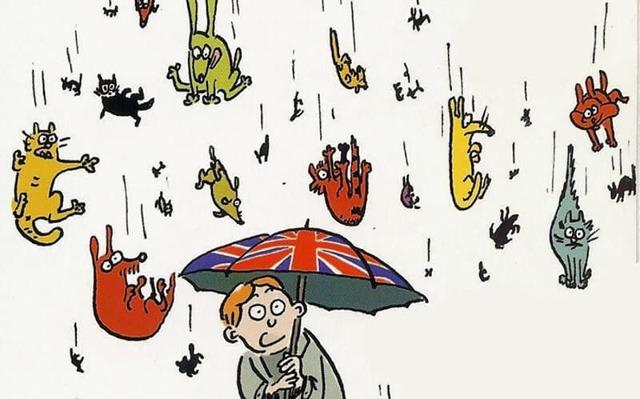 15 идиом о погоде на английском языке с историями происхождения