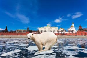 9 распространенных мифов о русскоязычных преподавателях