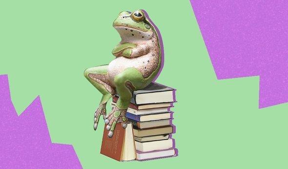 5 вредных советов для изучающих английский язык на январь