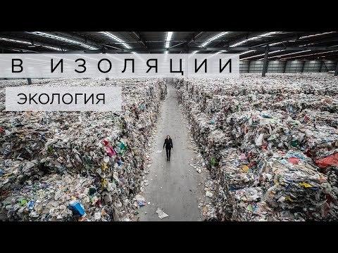 Английский по видео: учим слова на тему экологии