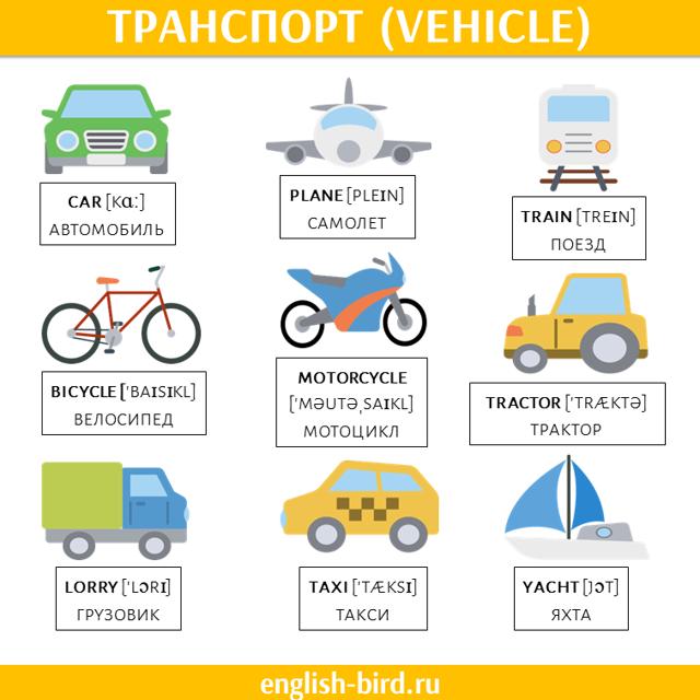 Городской транспорт: простой разговорник на английском языке
