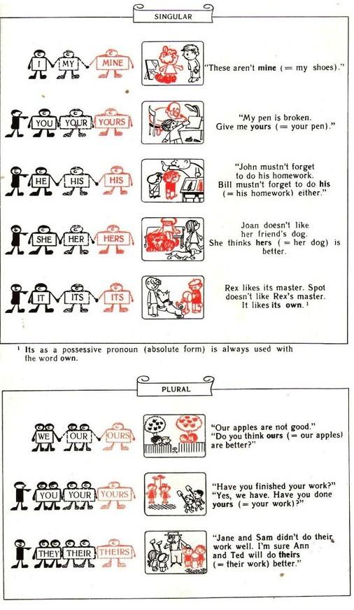 Личные и притяжательные местоимения в английском языке