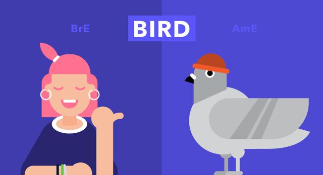 Лексическая разница между британским и американским вариантами английского