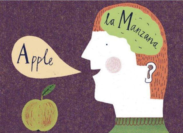 Преимущества билингва: почему круто знать два языка