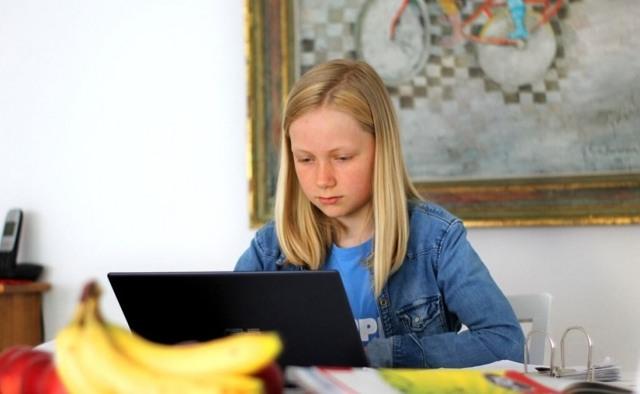 Достижения онлайн-школы в 2016 году